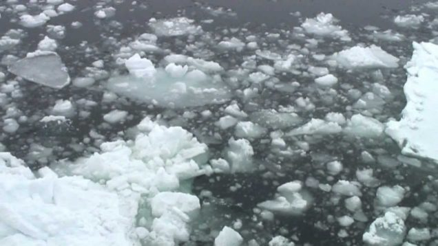 ICE SURPRISE (720p HD film)