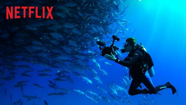 Mission Blue – Official Trailer – Netflix [HD]