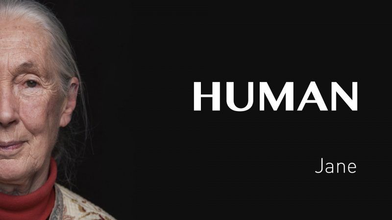 Jane's interview – FRANCE – #HUMAN