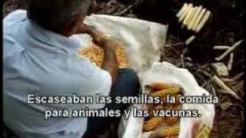 The Power of Community. How Cuba Survived Peak Oil (sub español)