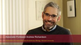 "Harvard Speaks on Climate Change. Andrew Richardson: ""PhenoCam: A Continental-Scale Phenological Record"""