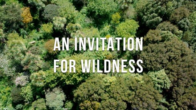 Permaculture Food Forest Introduction (Sharing Of Practical Methods and Experiences)