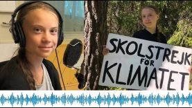 Greta Thunberg Summer Talk 2020